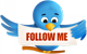 twitter-follow-enetworks